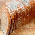 ekmek-küflü-150x150