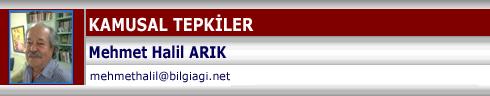 yazarportal-com-bilgiagi-net-tasviriefkar-com