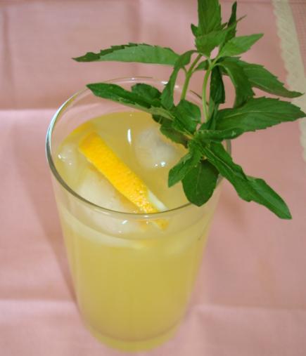 limonata-bilgiagi.net