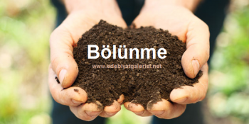 BLNME-~1