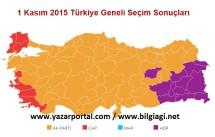 Bir Kasım Milletvekili Genel Seçim Sonuçları Üzerine